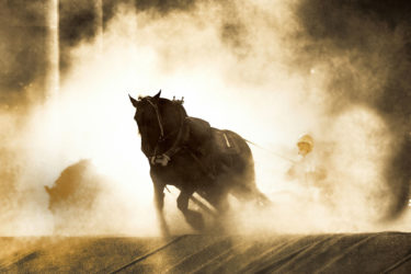 ばんえい競馬を見に帯広へ
