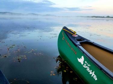 釧路湿原の釧路川をカヌーで巡る