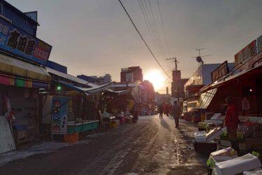 函館駅からすぐ!新鮮な海鮮が食べられる函館朝市へ行ってみた!